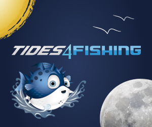 tides for fishing