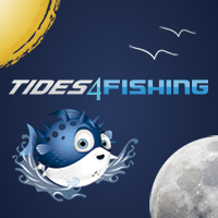 Tide table and solunar tables for fishing